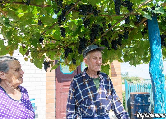 Где эти Лашевичи? Жители деревни под Гродно 70 лет жили без дорожного указателя, фото-3
