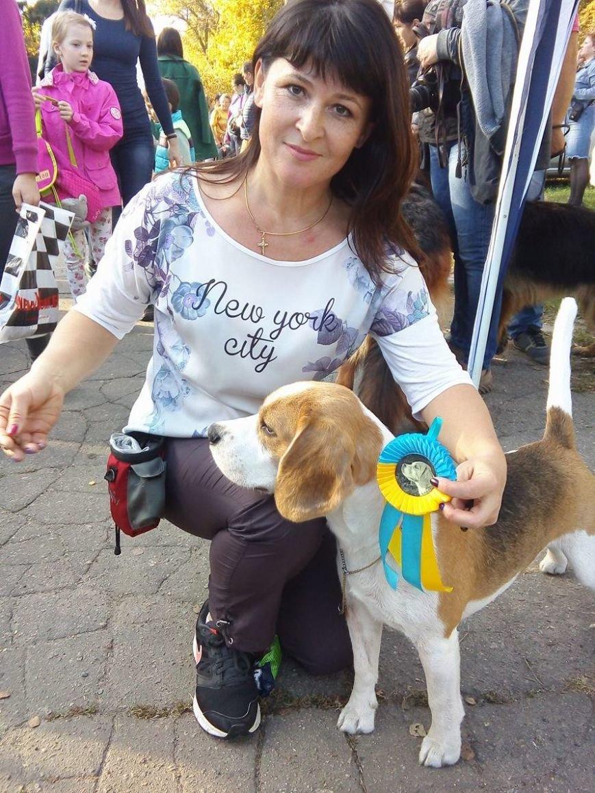 На сумской областной выставке собак организаторы определили 100 победителей (ФОТООТЧЕТ), фото-2