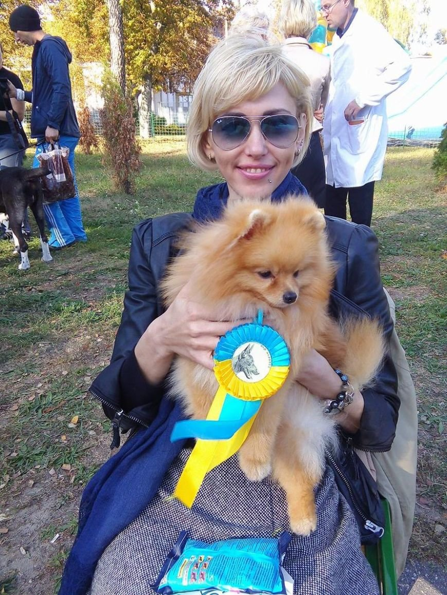 На сумской областной выставке собак организаторы определили 100 победителей (ФОТООТЧЕТ), фото-4