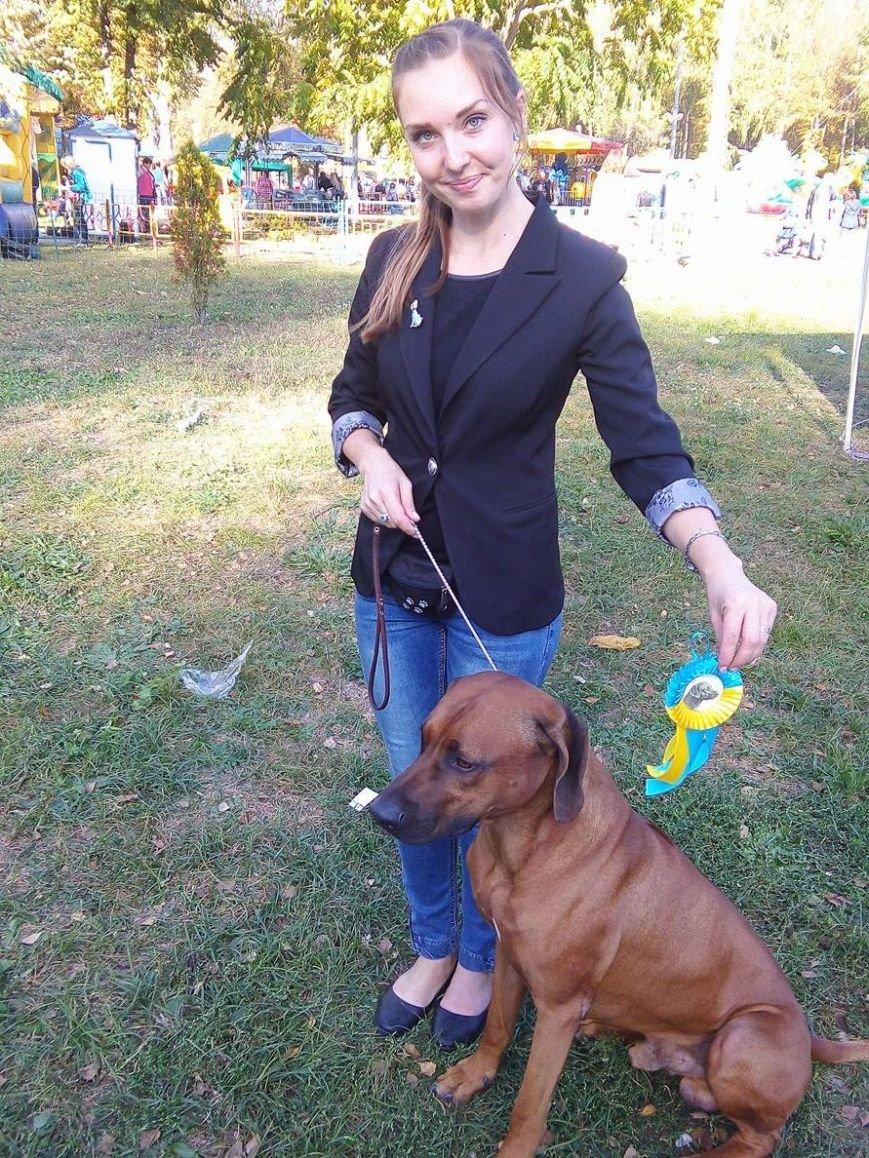 На сумской областной выставке собак организаторы определили 100 победителей (ФОТООТЧЕТ), фото-3