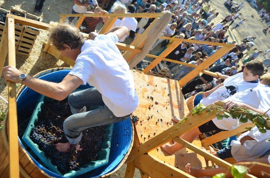 В Крыму прошел праздник урожая и молодого вина (ФОТО), фото-5