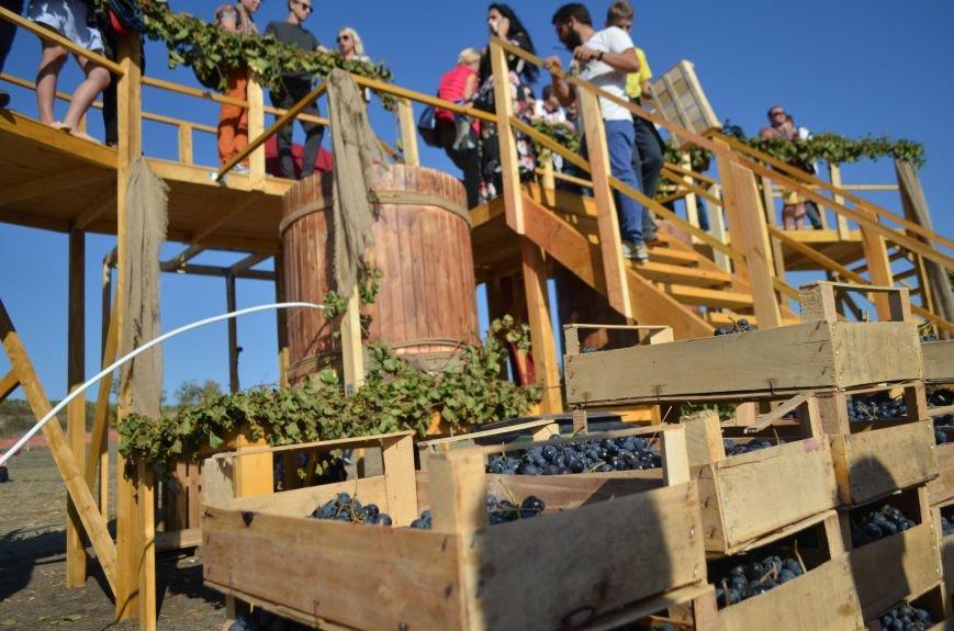 В Крыму прошел праздник урожая и молодого вина (ФОТО), фото-2