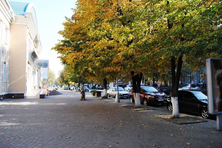 Бабье лето в Кременчуге продолжается (ФОТО), фото-6