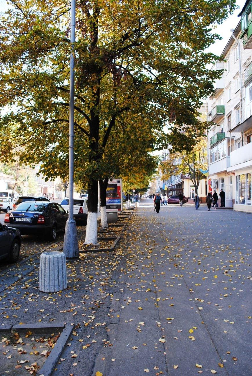 Бабье лето в Кременчуге продолжается (ФОТО), фото-2