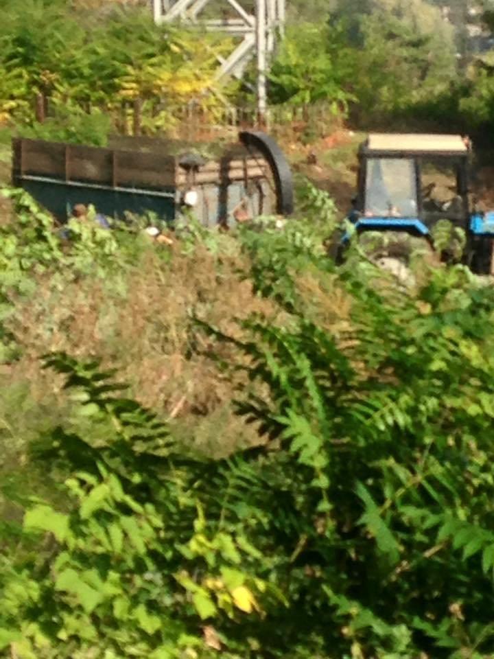 В парках Днепра наводят порядки (ФОТО), фото-10