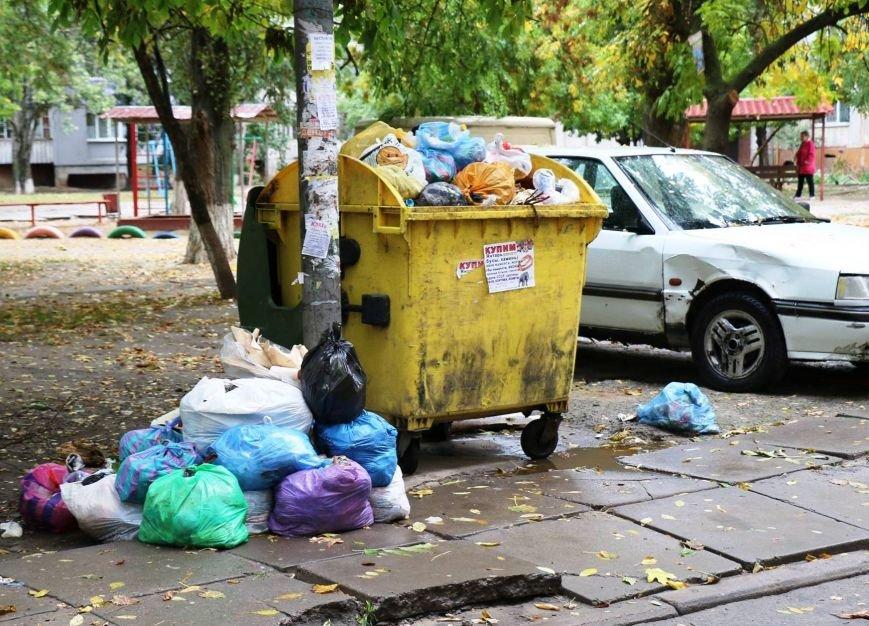 Херсон уверенно становится мусорной столицей Украины, фото-5