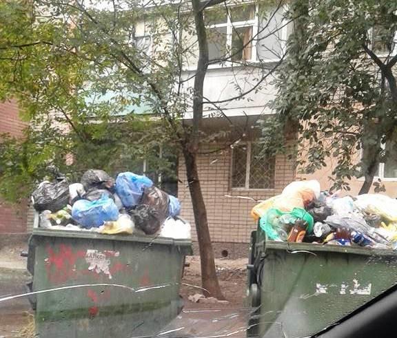 Херсон уверенно становится мусорной столицей Украины, фото-3