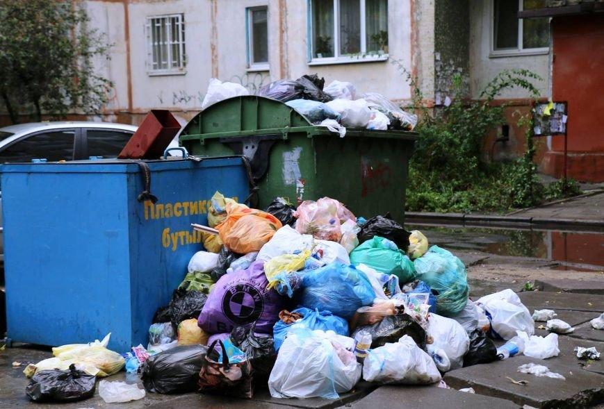Херсон уверенно становится мусорной столицей Украины, фото-4