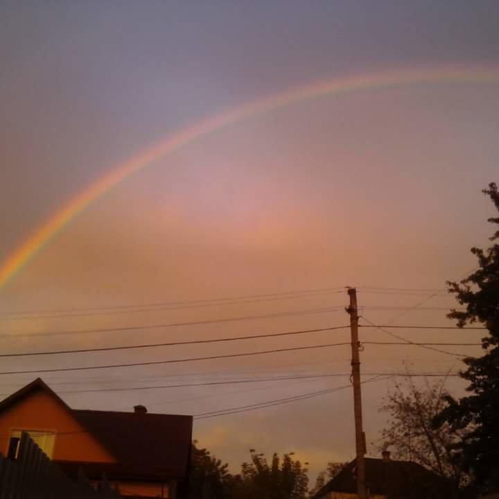 Невероятные фото после дождя в Днепре, фото-10