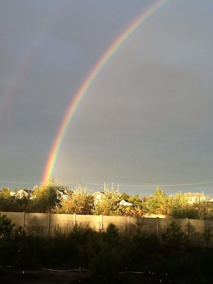 Невероятные фото после дождя в Днепре, фото-5