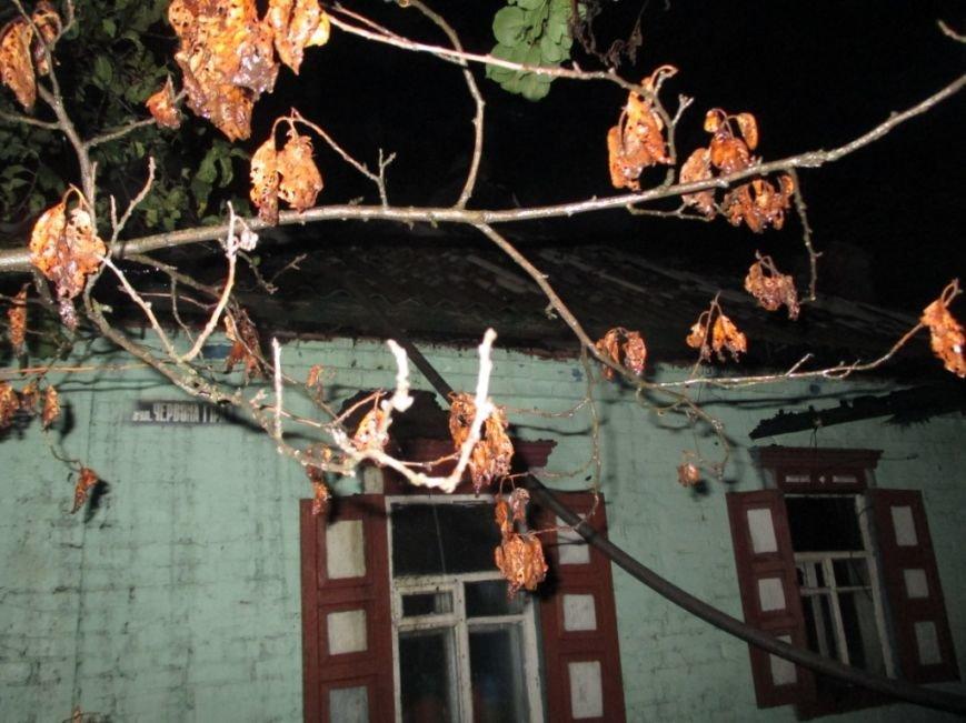 Пожар в Кременчуге: в преддверии зимы 87-летняя старушка осталась без веранды и крыши над головой (ФОТО), фото-3