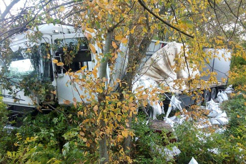 В Белгородской области за сутки в ДТП погибли четыре человека, фото-3