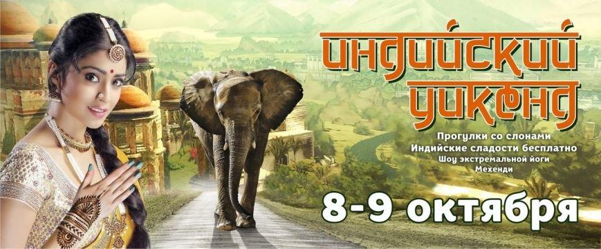 Буддизм, слоны, экстрим – 10 способов провести выходные в Чернигове интересно, фото-9