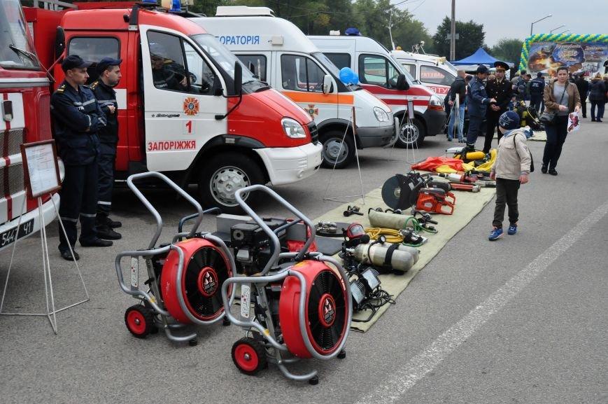 Как в Запорожье проходит Покровская ярмарка, - ФОТОРЕПОРТАЖ, фото-6