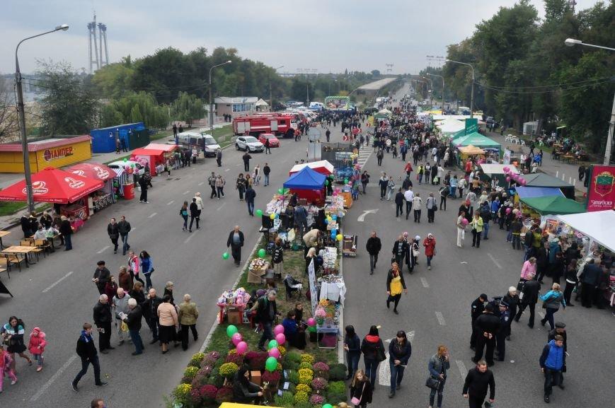 Как в Запорожье проходит Покровская ярмарка, - ФОТОРЕПОРТАЖ, фото-4