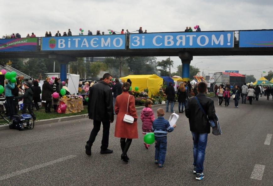 Как в Запорожье проходит Покровская ярмарка, - ФОТОРЕПОРТАЖ, фото-7
