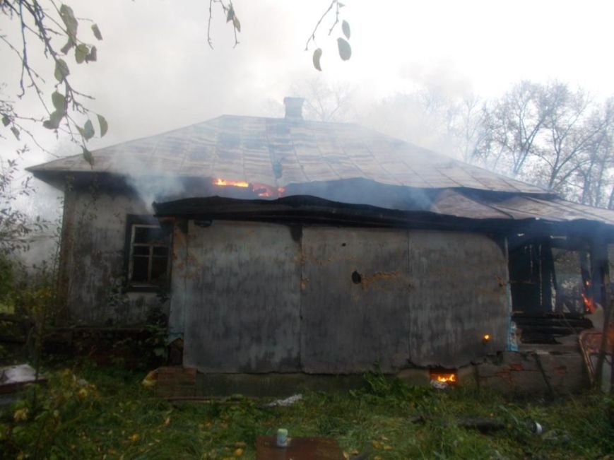 Во время пожара в жилом доме на Черниговщине погиб 78-летний хозяин, фото-2