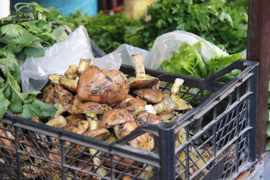 Первые жертвы грибов: два херсонца скончались, фото-1