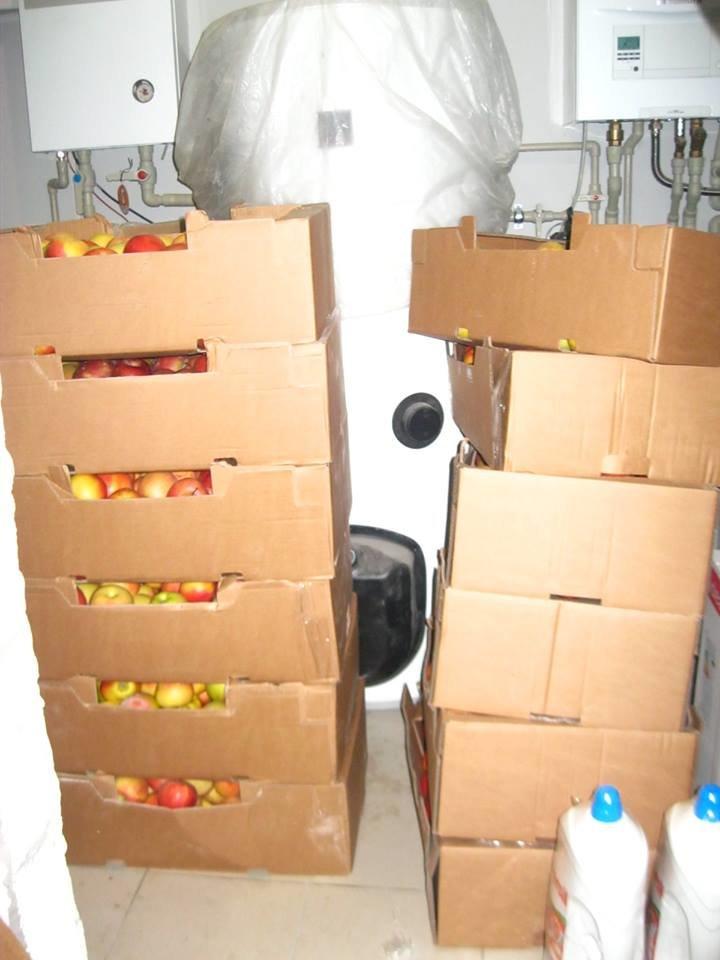 Херсонские волонтеры везут в зону АТО 12 ящиков яблок, фото-1