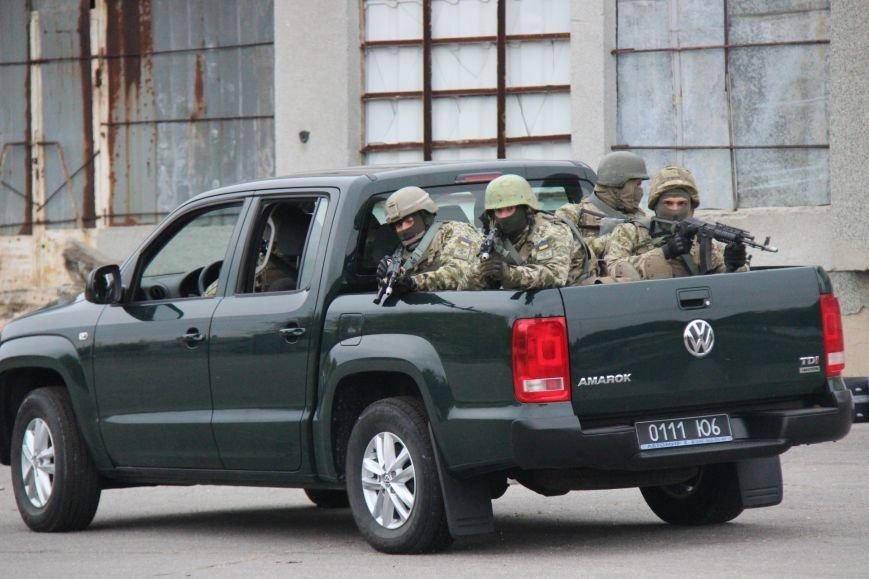 В Херсоне состоялись показательные выступления пограничников (фото), фото-3