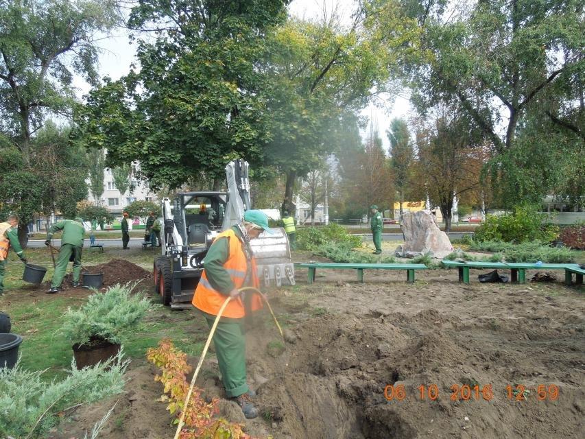 Ивы, сливы, барбарис: в кременчугских скверах и парках высаживают новые кусты и деревья (ФОТО), фото-15