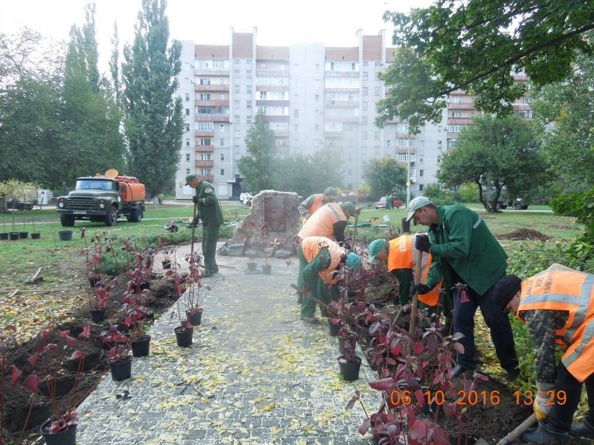 Ивы, сливы, барбарис: в кременчугских скверах и парках высаживают новые кусты и деревья (ФОТО), фото-18