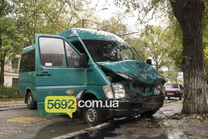 В Каменском в ДТП на улице Спортивной микроавтобус Volkswagen врезался в дерево, фото-6