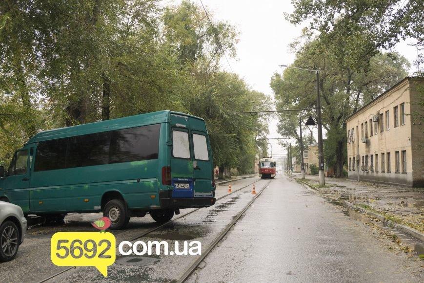 В Каменском в ДТП на улице Спортивной микроавтобус Volkswagen врезался в дерево, фото-4