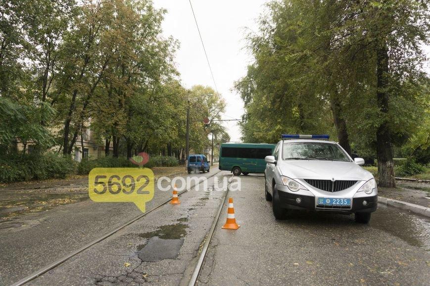 В Каменском в ДТП на улице Спортивной микроавтобус Volkswagen врезался в дерево, фото-1