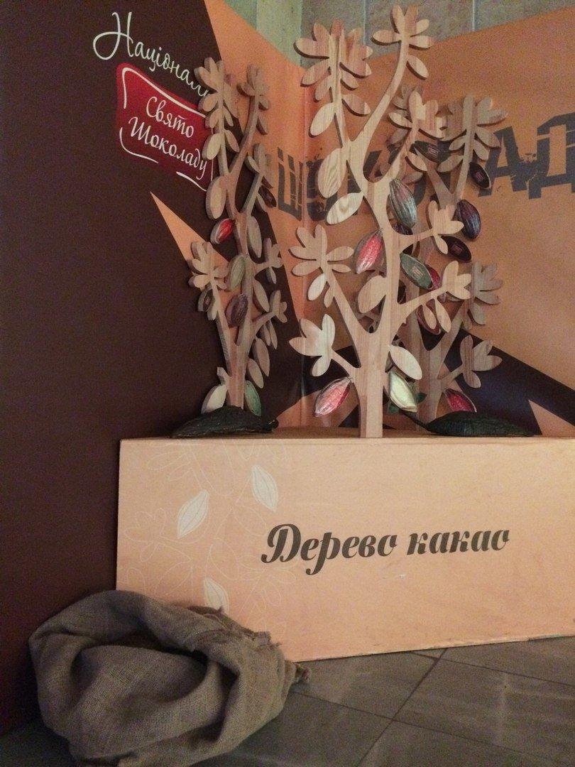 У Львівському палаці мистецтв відкрили Музей шоколаду (ФОТО), фото-7