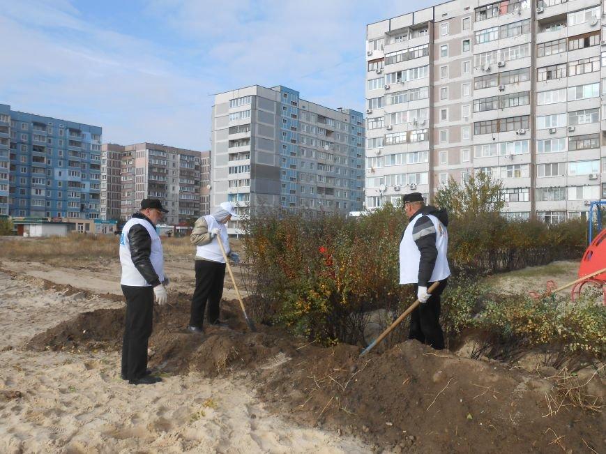 В Каменском состоялась акция по озеленению модульного городка для переселенцев, фото-5