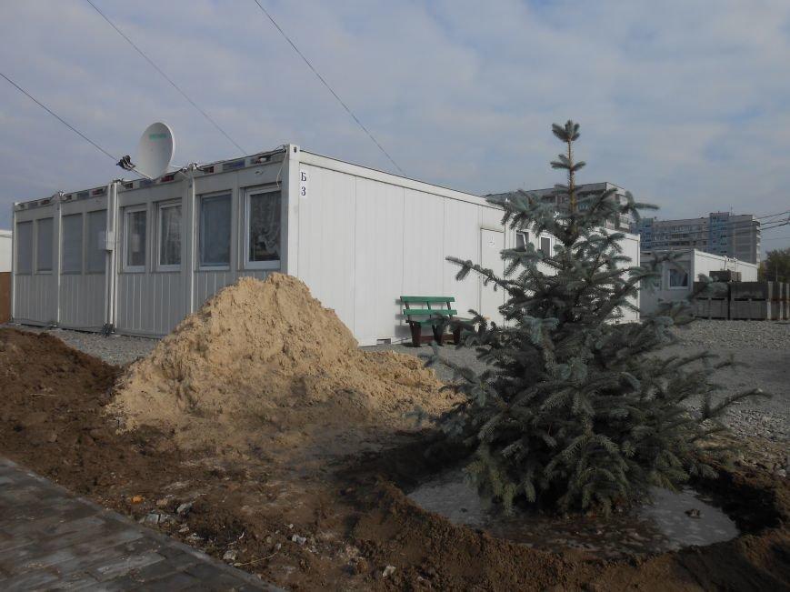 В Каменском состоялась акция по озеленению модульного городка для переселенцев, фото-2