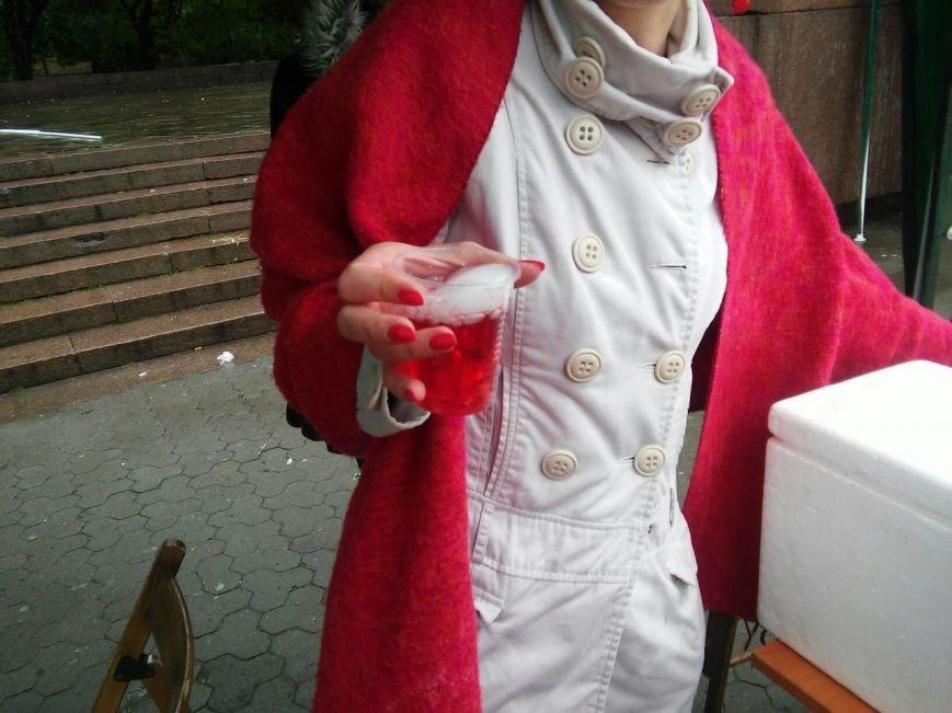 У парку імені Івана Франка сьогодні провели науковий пікнік (ФОТО), фото-4