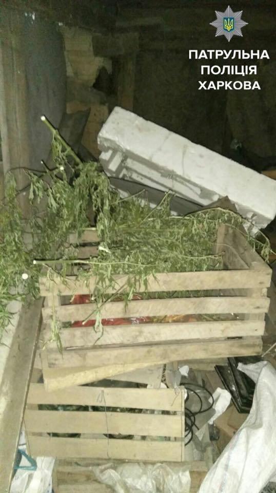 В Харькове сын напал на родителей с ножом (ФОТО), фото-2