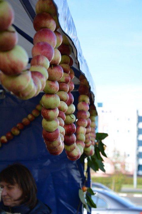 Сладкий мед, вкусные яблоки и пушистые кролики: в Гродно прошла выставка-ярмарка «Агроосень-2016», фото-13
