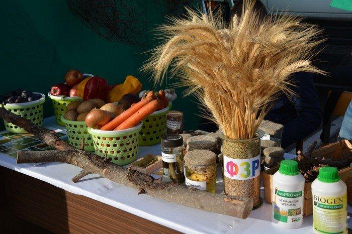 Сладкий мед, вкусные яблоки и пушистые кролики: в Гродно прошла выставка-ярмарка «Агроосень-2016», фото-40