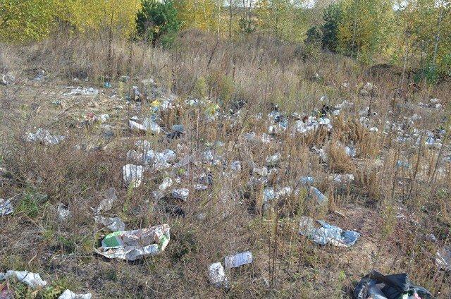 У районі ведеться боротьба з незаконними сміттєзвалищами, фото-2