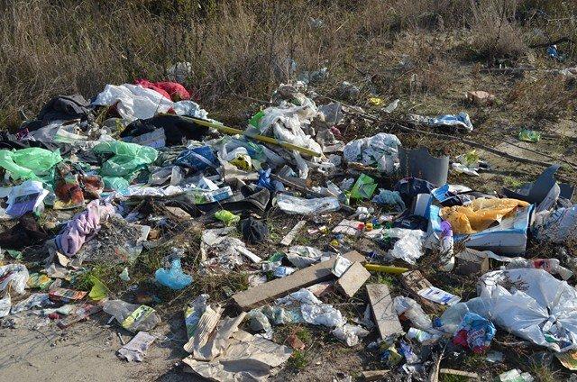 У районі ведеться боротьба з незаконними сміттєзвалищами, фото-1