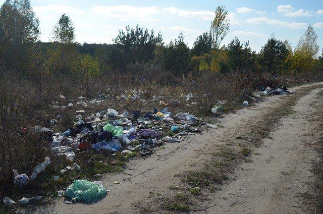 У районі ведеться боротьба з незаконними сміттєзвалищами, фото-3