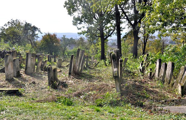 Єврейське кладовище у Сторожинці приводять до ладу, фото-1