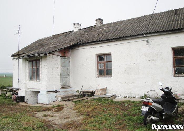 Конфликт поколений: бабушка из деревни под Гродно не может вернуться в свой дом из-за постоянных избиений сына, фото-2