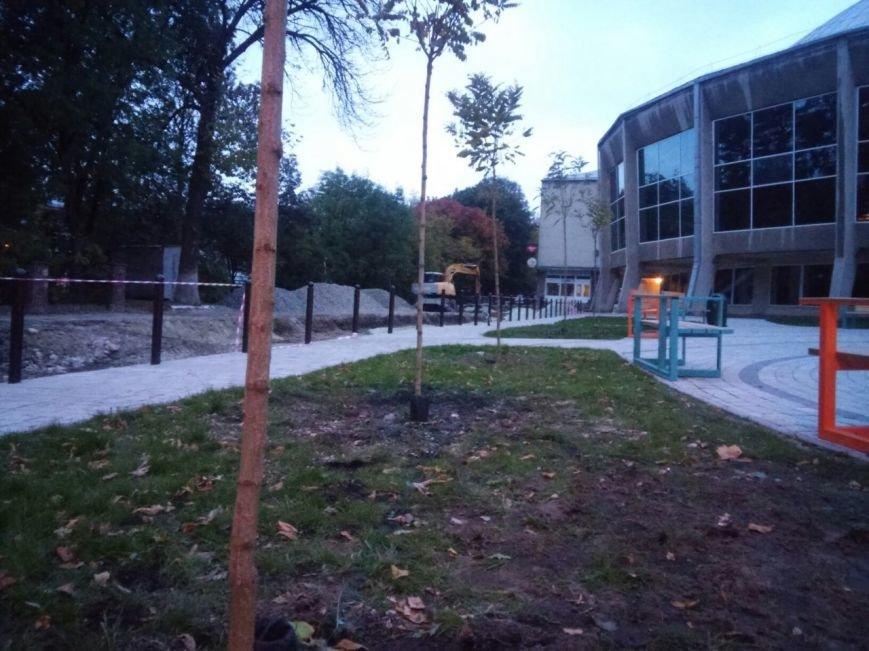 На площі біля цирку висадили райські яблуні та кущі (ФОТО), фото-2