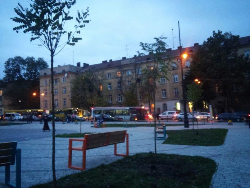 На площі біля цирку висадили райські яблуні та кущі (ФОТО), фото-1