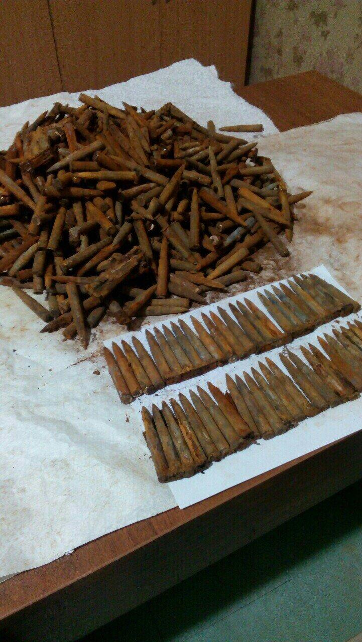 Во время земляных работ каменчанин нашел 1197 патронов, фото-2