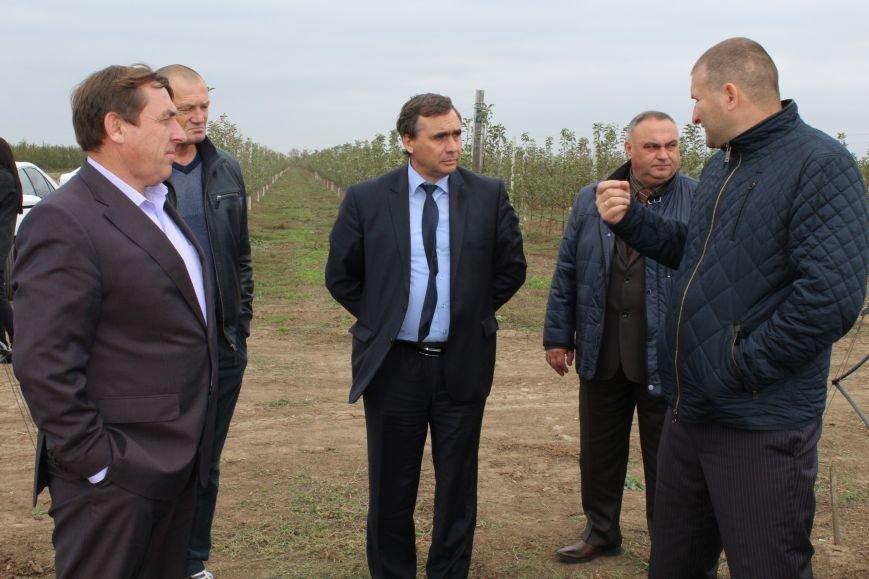 В Крыму аграрии, проявившие инициативу и грамотно оформившие заявки, получат государственные субсидии (ФОТО), фото-1