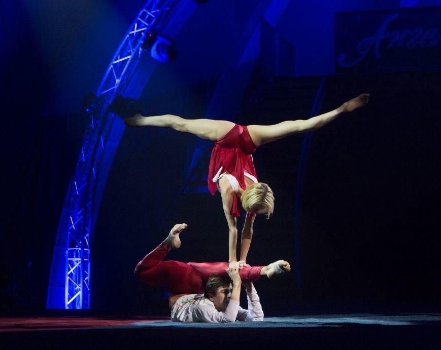 Самый большой цирк Украины, цирк «Кобзов» порадует гастролями Кропивницкий!, фото-6
