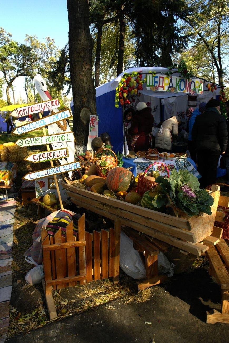 Поселок Шевченко Покровского (Красноармейского) района отпраздновал свое 115-летие, фото-19