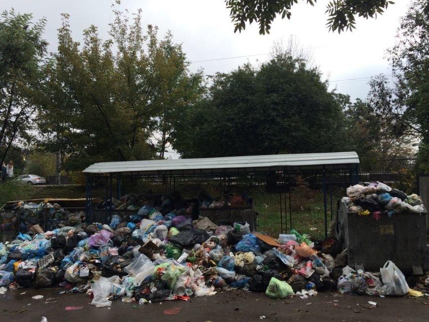 У Львові знову не вивозять сміття (ФОТО), фото-3