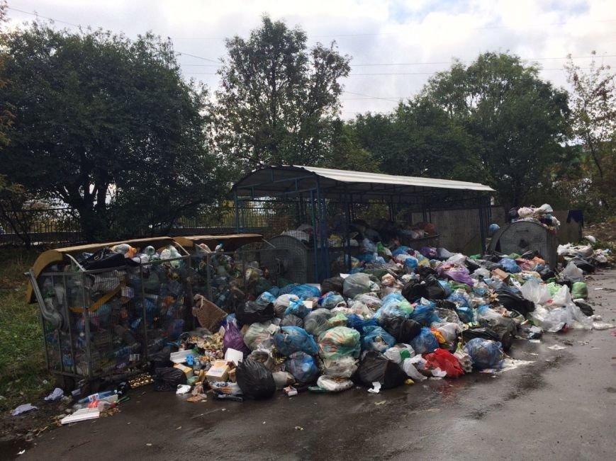 У Львові знову не вивозять сміття (ФОТО), фото-2