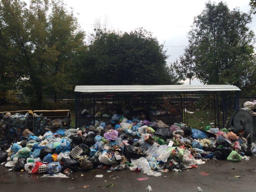 У Львові знову не вивозять сміття (ФОТО), фото-1